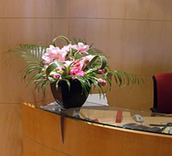 Flores para ambientacion de hoteles y decoracion de for Decoracion para hoteles